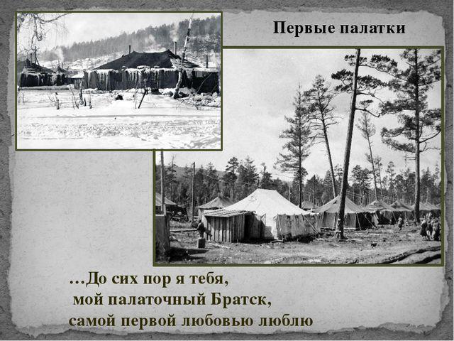 Первые палатки …До сих пор я тебя, мой палаточный Братск, самой первой любовь...