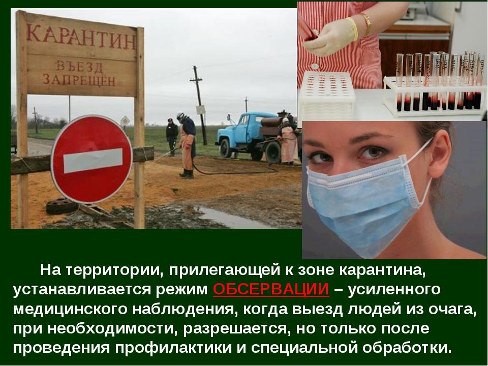 На территории, прилегающей к зоне карантина, устанавливается режим ОБСЕРВАЦИ...