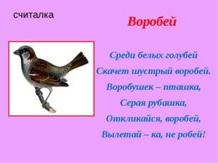 считалка Воробей Среди белых голубей Скачет шустрый воробей. Воробушек – пташ