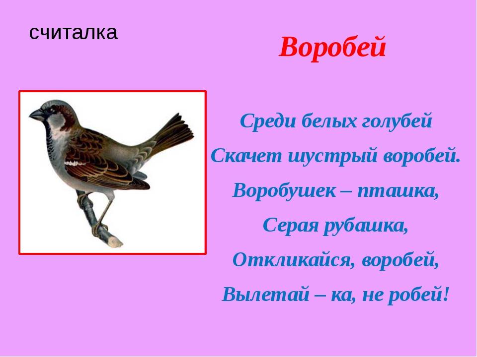 считалка Воробей Среди белых голубей Скачет шустрый воробей. Воробушек – пташ...