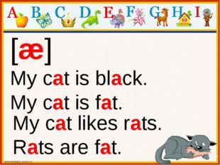 [æ] My cat is black. My cat is fat. My cat likes rats. Rats are fat.