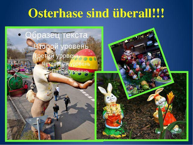 Osterhase sind überall!!!