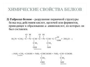 3) Гидролиз белков – разрушение первичной структуры белка под действием кисло