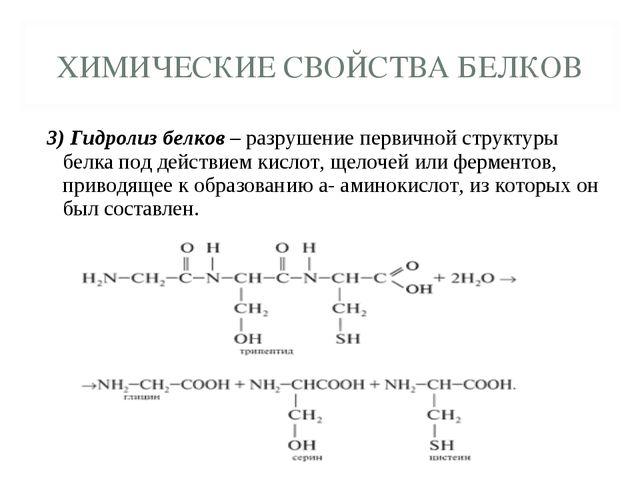 3) Гидролиз белков – разрушение первичной структуры белка под действием кисло...