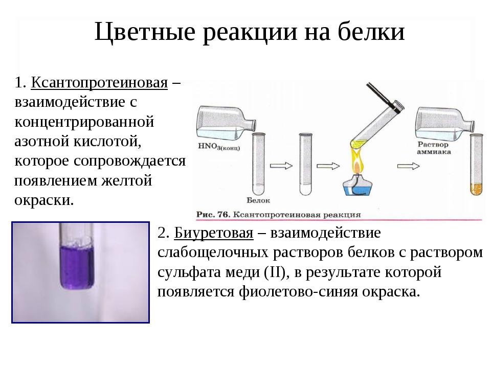 Цветные реакции на белки 1. Ксантопротеиновая – взаимодействие с концентриров...