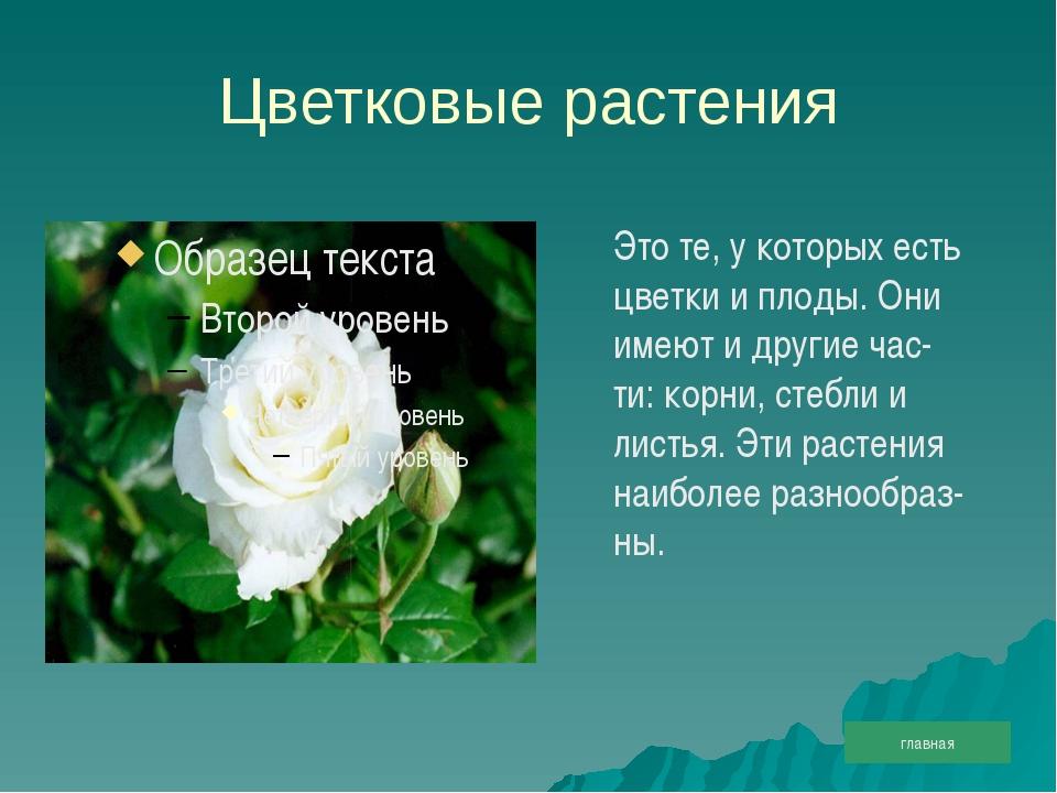 Цветковые растения Это те, у которых есть цветки и плоды. Они имеют и другие...