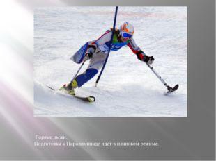 Горные лыжи. Подготовка к Паралимпиаде идет в плановом режиме.