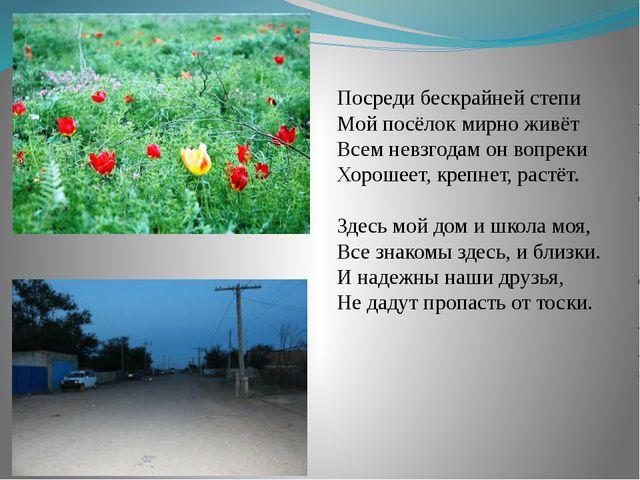 Посреди бескрайней степи Мой посёлок мирно живёт Всем невзгодам он вопреки Хо...