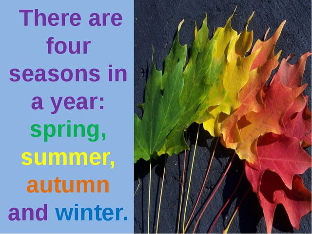 There are four seasons in a year: spring, summer, autumn and winter.