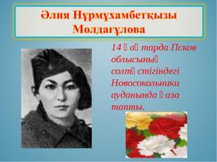 14 қаңтарда Псков облысының солтүстігіндегі Новосокольники ауданында қаза тап
