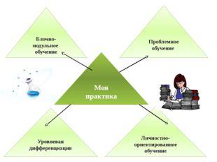 Проблемное обучение Блочно-модульное обучение Моя практика Уровневая дифферен