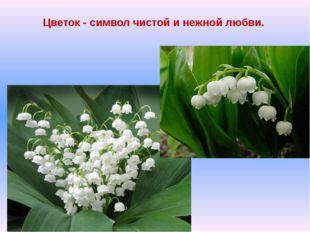 Цветок - символ чистой и нежной любви.