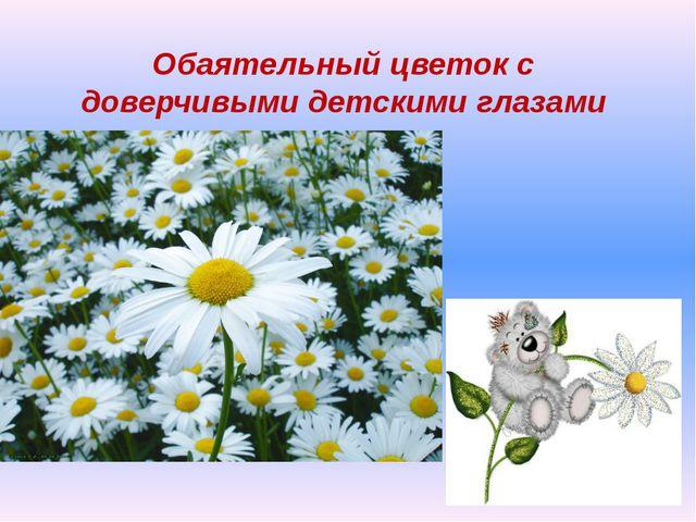 Обаятельный цветок с доверчивыми детскими глазами
