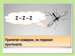 Прилетел комарик, он поранил крылышко. Z – Z – Z