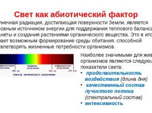 Свет как абиотический фактор Солнечная радиация, достигающая поверхности Земл