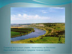 Племена восточных славян поселились на Восточно-Европейской равнине в среднем