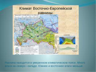 Равнина находится в умеренном климатическом поясе. Много влаги на северо –зап