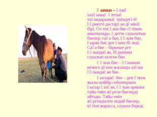 Қымыз – қазақ халқының ұлттық тағамдарының ішіндегі ең құрметті дастарқан д
