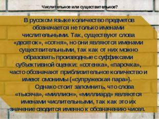 Числительное или существительное? В русском языке количество предметов обозна