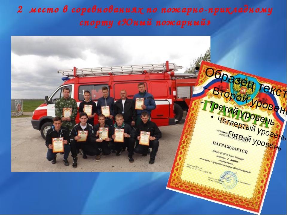 2 место в соревнованиях по пожарно-прикладному спорту «Юный пожарный»