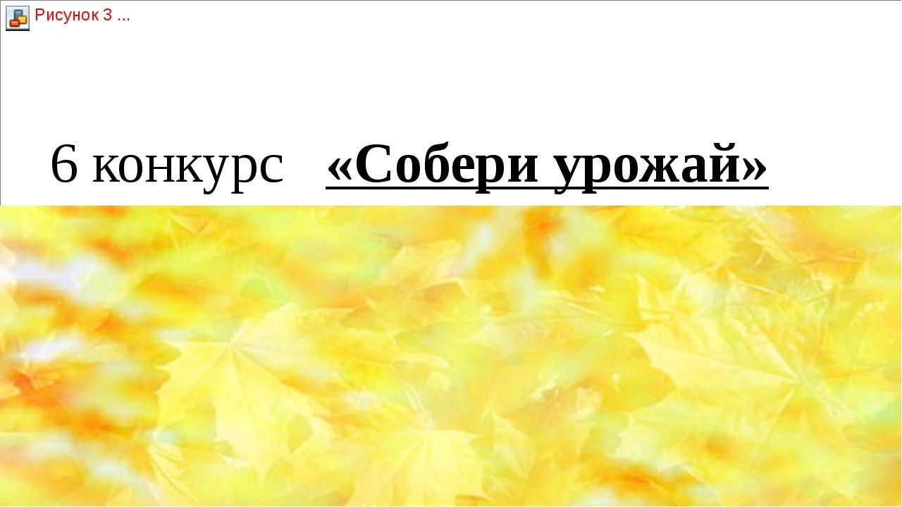 6 конкурс   «Собери урожай»