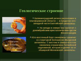 Геологическое строение Калининградский регион расположен в платформенной обла