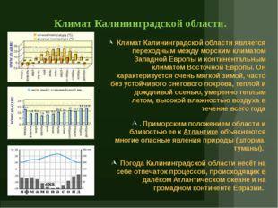Климат Калининградской области. Климат Калининградской области является перех