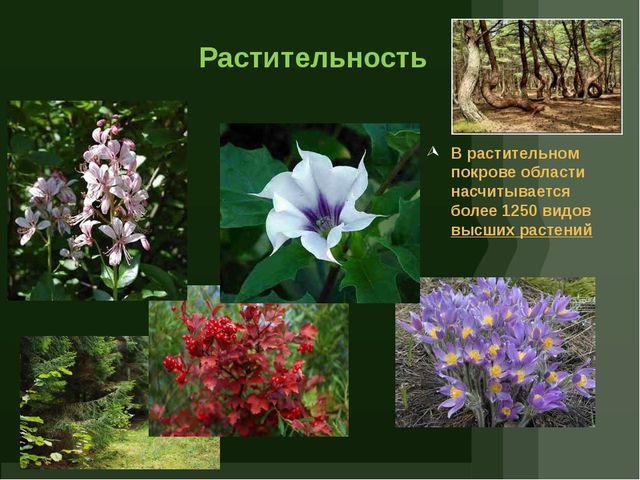 Растительность В растительном покрове области насчитывается более 1250 видов...