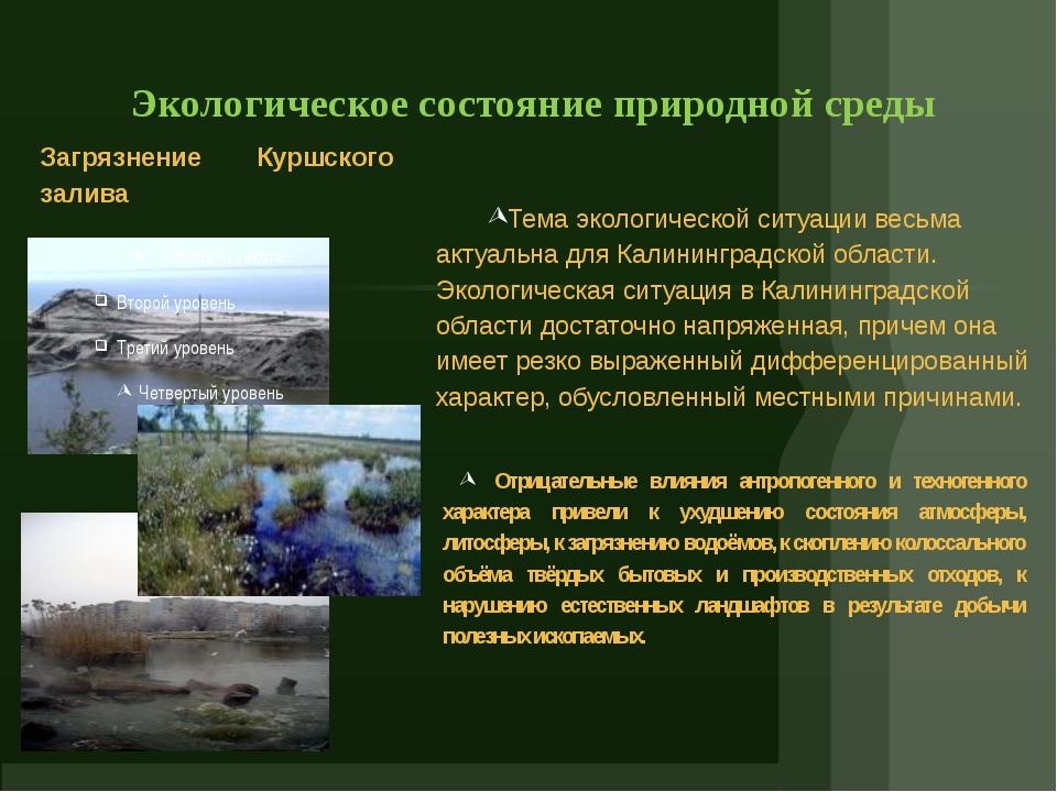 Экологическое состояние природной среды Загрязнение Куршского залива Тема эк...