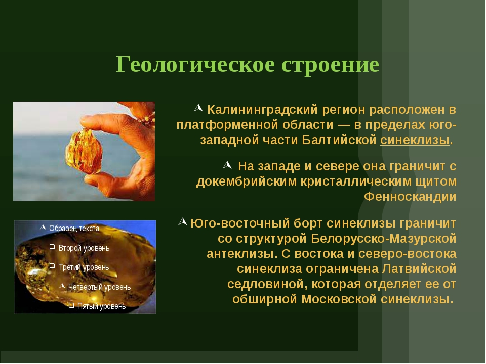 Геологическое строение Калининградский регион расположен в платформенной обла...