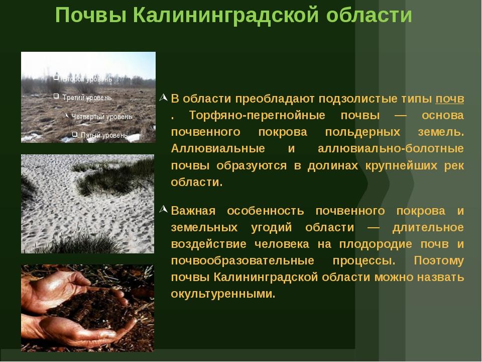 Почвы Калининградской области В области преобладают подзолистые типыпочв. То...