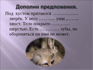 Под кустом притаился ……………. зверёк. У него ……….. уши ,…….. хвост. Тело покрыт