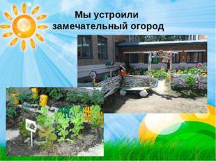 Мы устроили замечательный огород