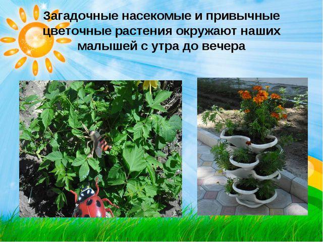 Загадочные насекомые и привычные цветочные растения окружают наших малышей с...