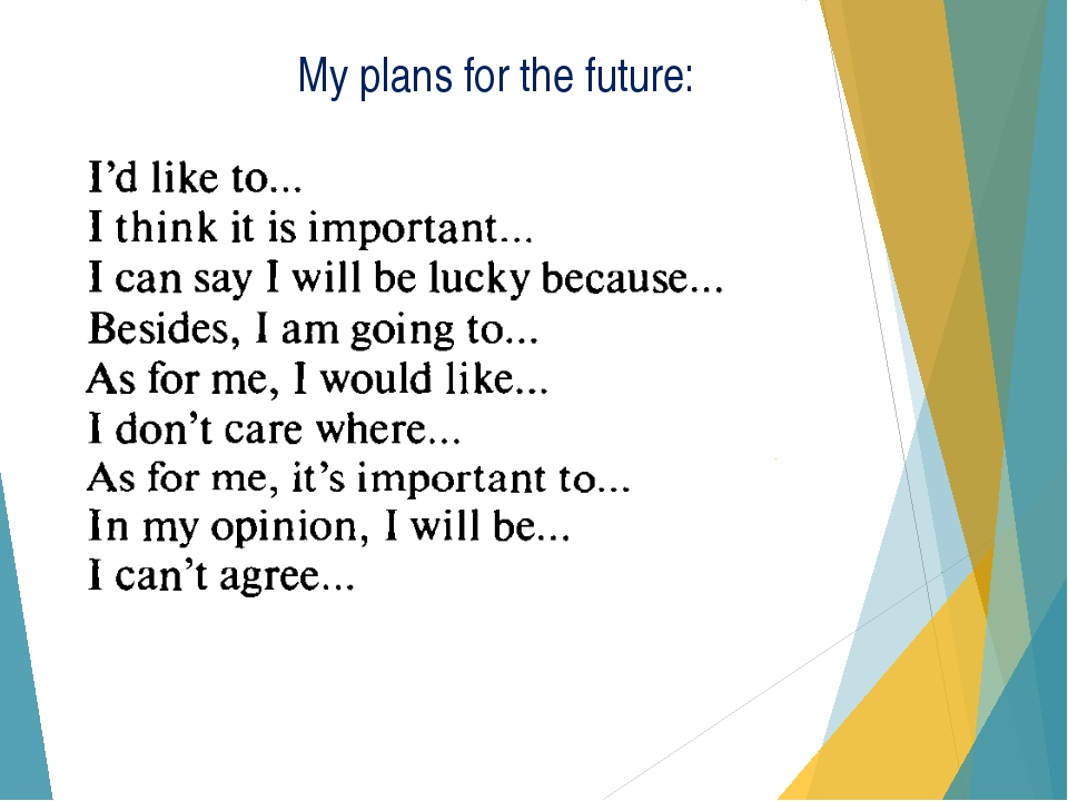 plan for your future essay