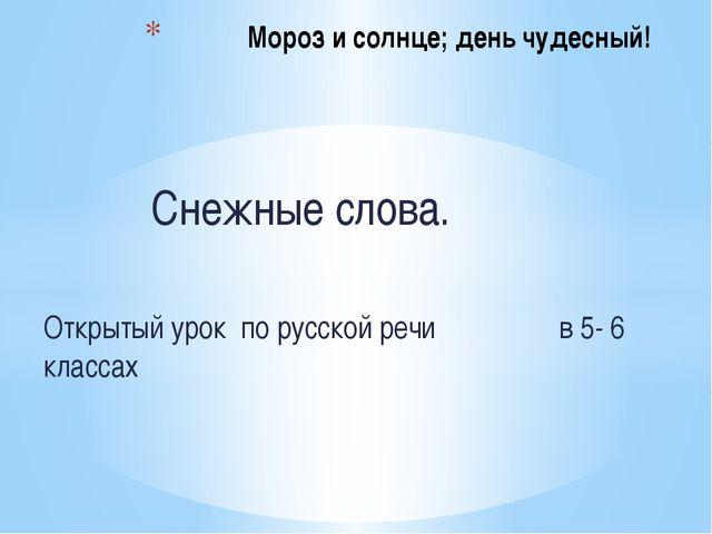 Снежные слова. Открытый урок по русской речи в 5- 6 классах Мороз и солнце;...