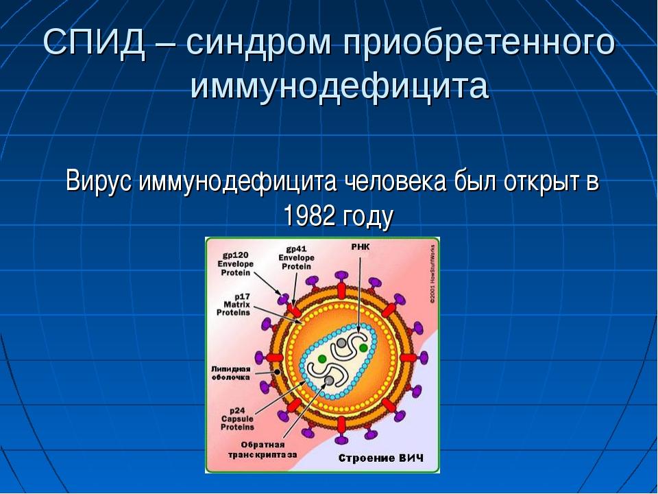 СПИД – синдром приобретенного иммунодефицита Вирус иммунодефицита человека бы...