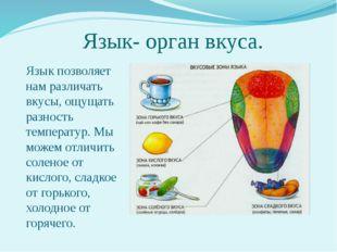 Язык- орган вкуса. Язык позволяет нам различать вкусы, ощущать разность темпе