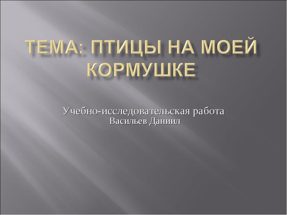 Учебно-исследовательская работа Васильев Даниил