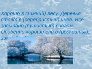 Хорошо в (зимний) лесу. Деревья стоят в (серебристый) инее. Все засыпано (пу