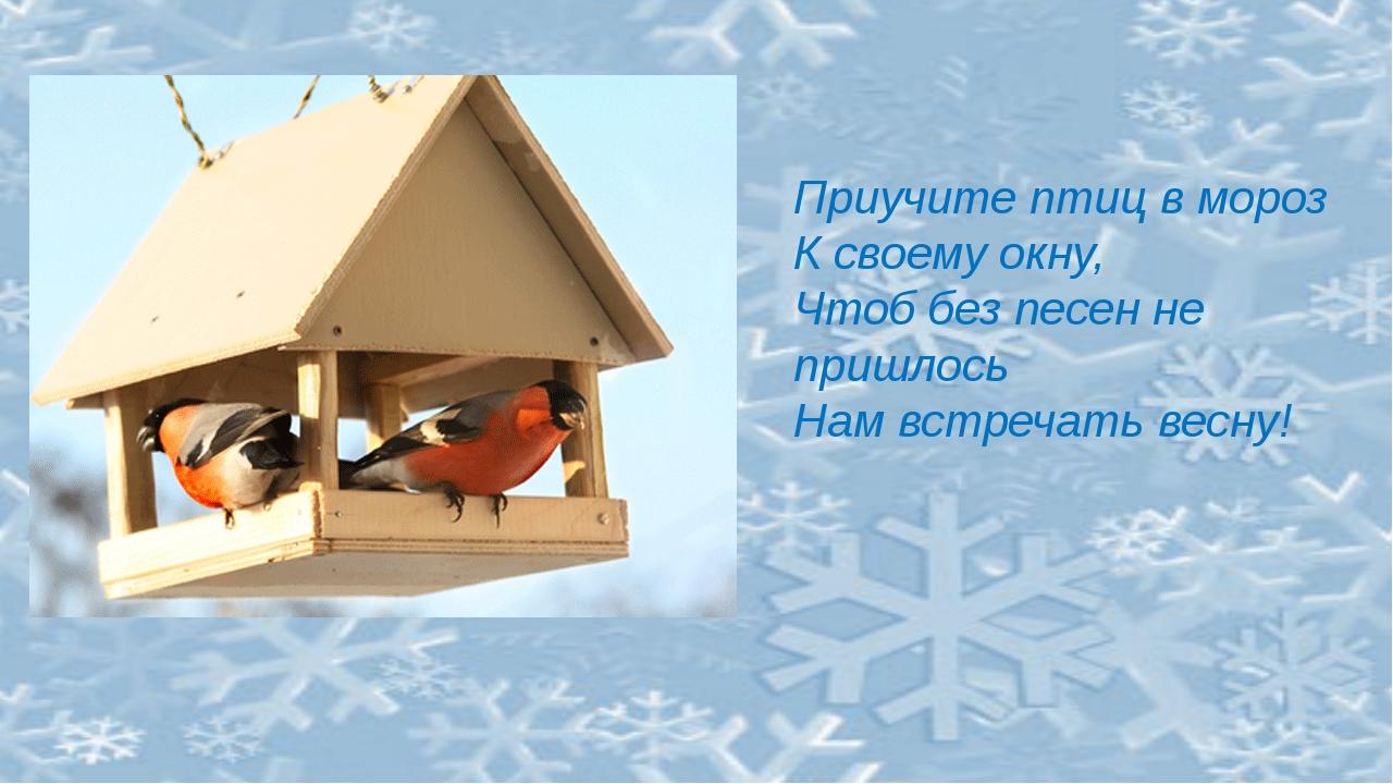 Приучите птиц в мороз К своему окну, Чтоб без песен не пришлось Нам встречат...