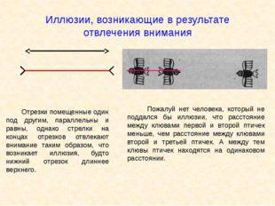 Иллюзии, возникающие в результате отвлечения внимания Отрезки помещенные один