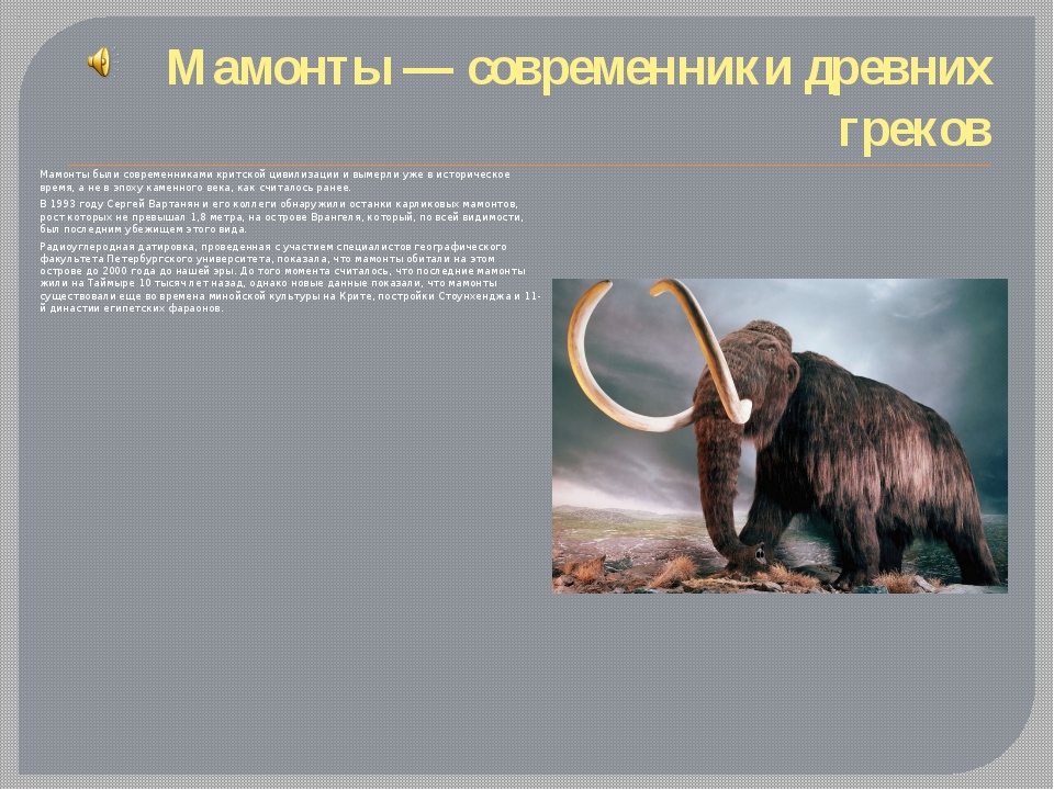 Мамонты— современники древних греков Мамонты были современниками критской ци...