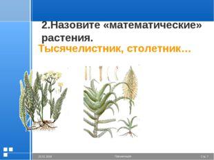 2.Назовите «математические» растения. Тысячелистник, столетник… Стр. * 20.01.