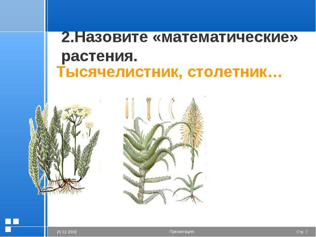 2.Назовите «математические» растения. Тысячелистник, столетник… Стр. * 20.01....