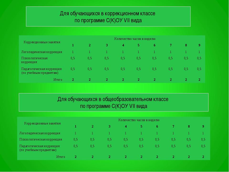 Для обучающихся в коррекционном классе по программе С(К)ОУ VII вида Для обуча...