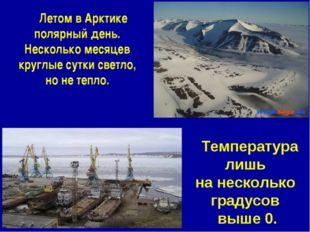 Летом в Арктике полярный день. Несколько месяцев круглые сутки светло, но не