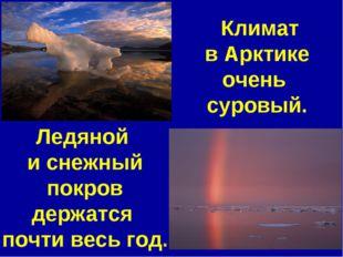 Климат в Арктике очень суровый. Ледяной и снежный покров держатся почти весь