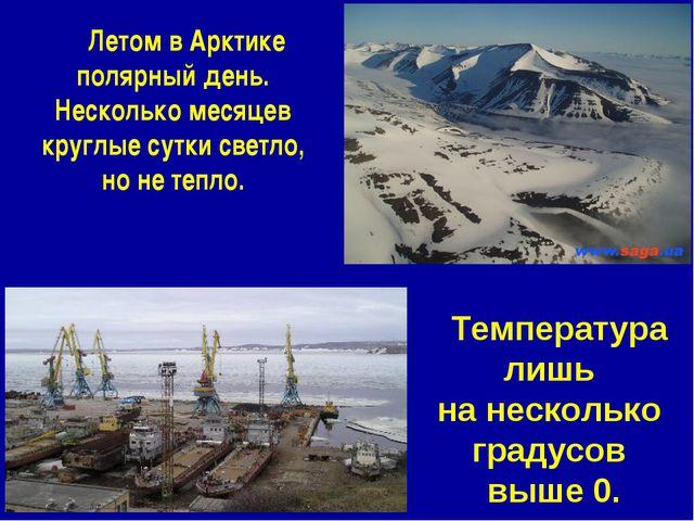 Летом в Арктике полярный день. Несколько месяцев круглые сутки светло, но не...