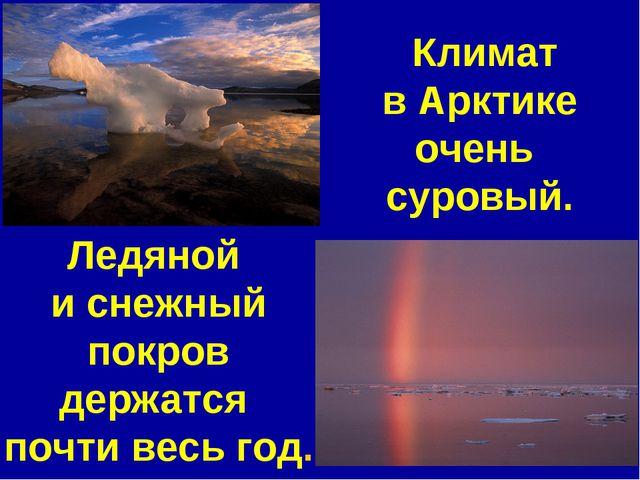 Климат в Арктике очень суровый. Ледяной и снежный покров держатся почти весь...